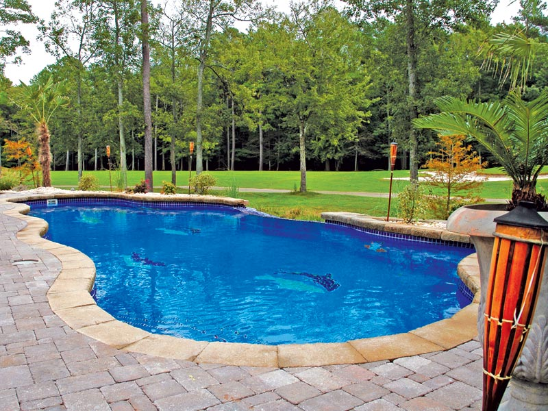 The Aqua Group Fiberglass Pools & Spas | Vanishing edge pools for ...